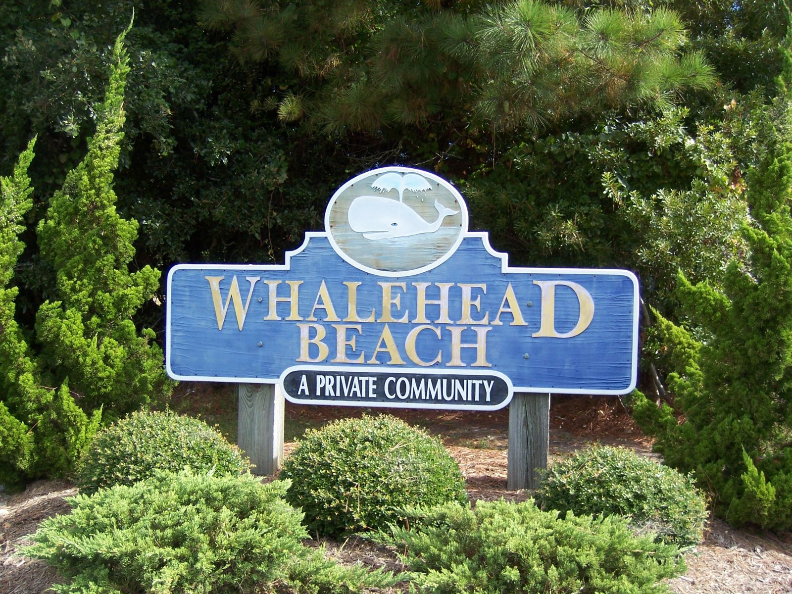 Corolla Real Estate - Whalehead Beach